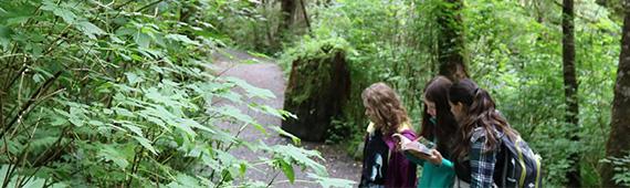 Rainforests Field School slider